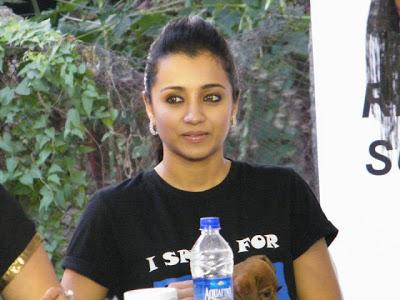Trisha Latest Photos At Blue Crosss Pressmeet - Jan 2013 ~ Cinemaawood