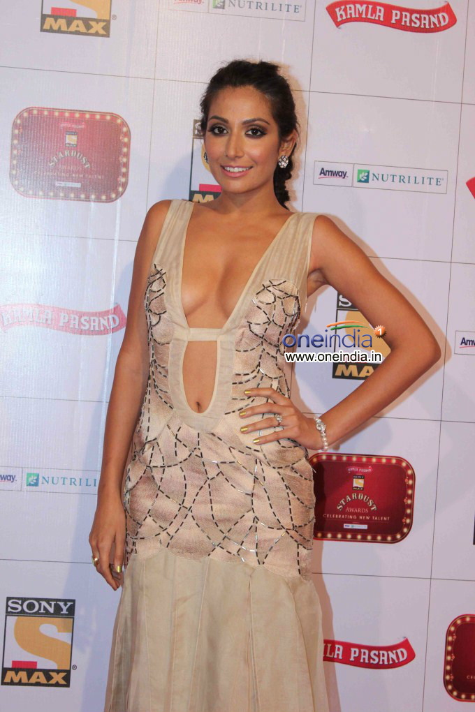 Monica Dogra at Stardust Awards 2013 - Oneindia Gallery