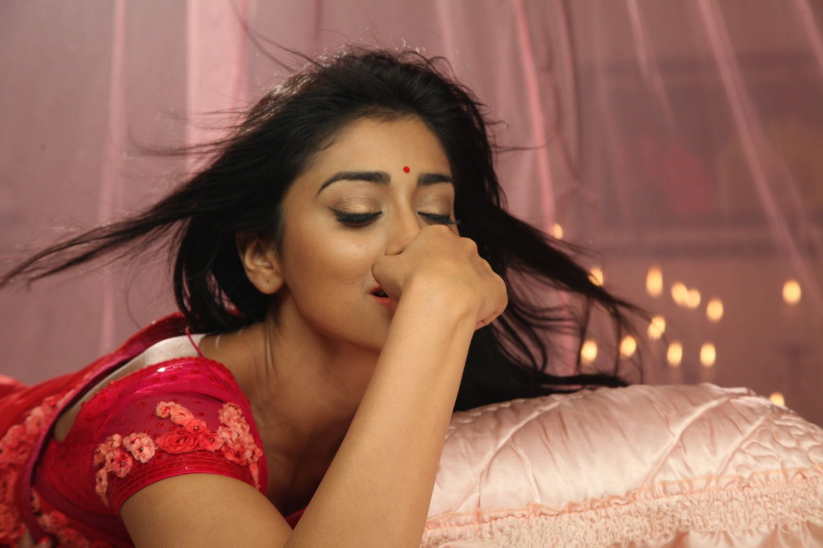Actress Shriya Saran Saree Stills in Pavitra Movie