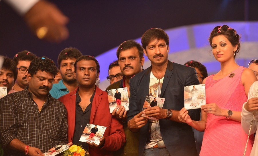 Loukyam-Movie-Audio-Launch-Loukyam-Film-Songs-Launch-Photos-PPL360
