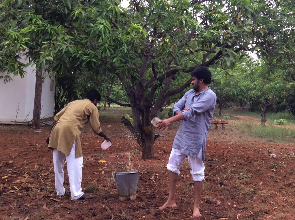 Pawan Kalyan speaks to trees